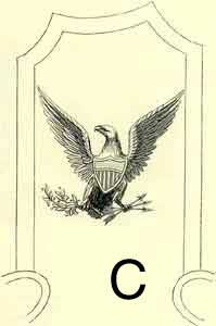 Colonel's Epaulette Eagle