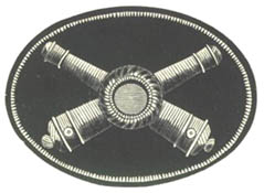 Cap Ornaments for Officers